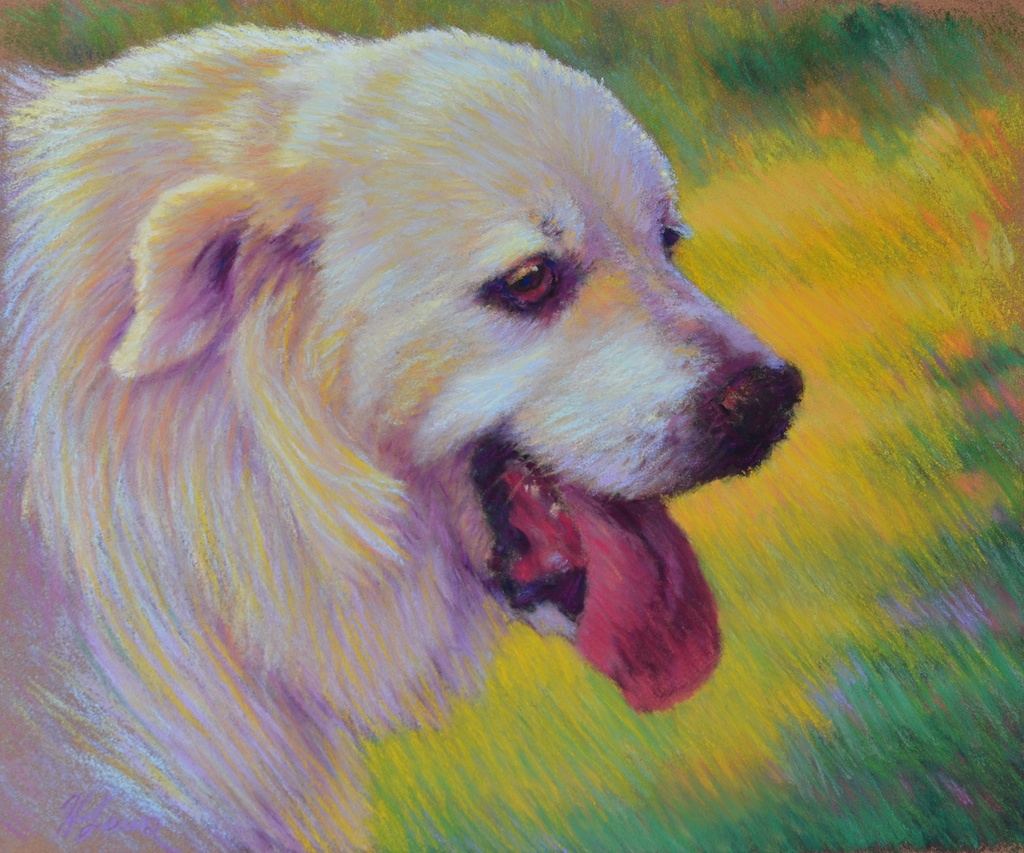 """Heather Laws, """"Great Pyrenees"""", Pastel on Sennelier LaCarte Paper, 10"""" x 9"""", $880"""