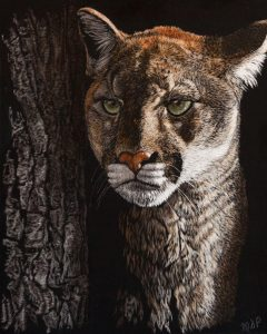 """Margaret Pardy, """"Out of the Darkness"""" , 10"""" x 8"""", Watercolour/Ink on Scratchboard, $480"""